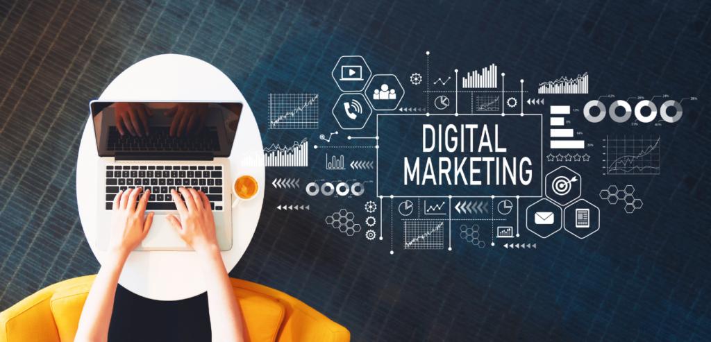 Marketing Consultant for Small Businesses Blackbird Digital Marketing